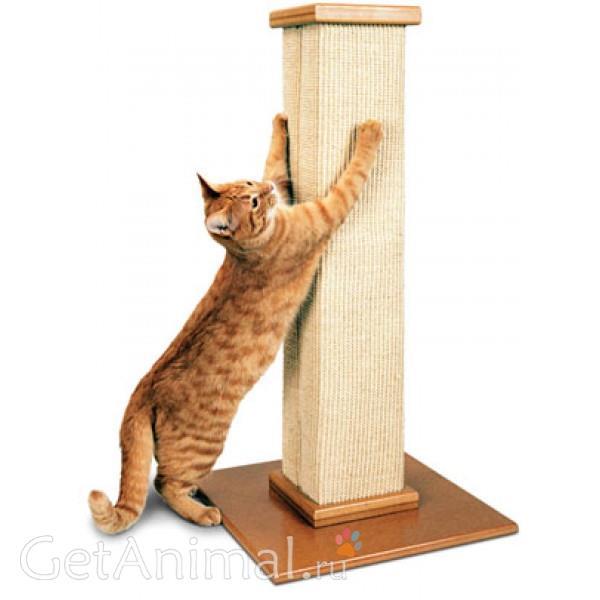когтеточка для котов